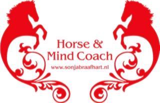 Sonja_Braafhart_mind coach